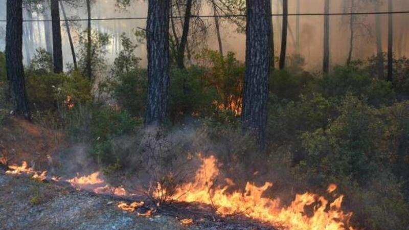 Marmaris-Datça Karayolu orman yangını nedeniyle ulaşıma kapatıldı
