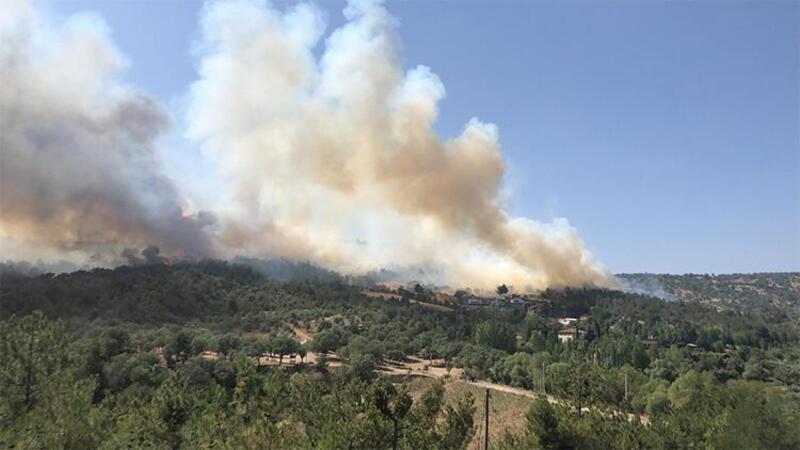 Uşak'ta orman yangınına müdahale ediliyor