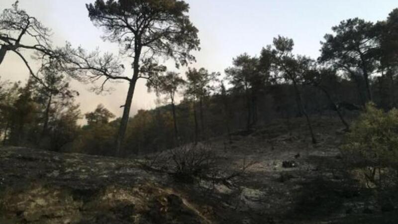 Muğla'nın Seydikemer ilçesindeki yangın kısmen kontrol altında
