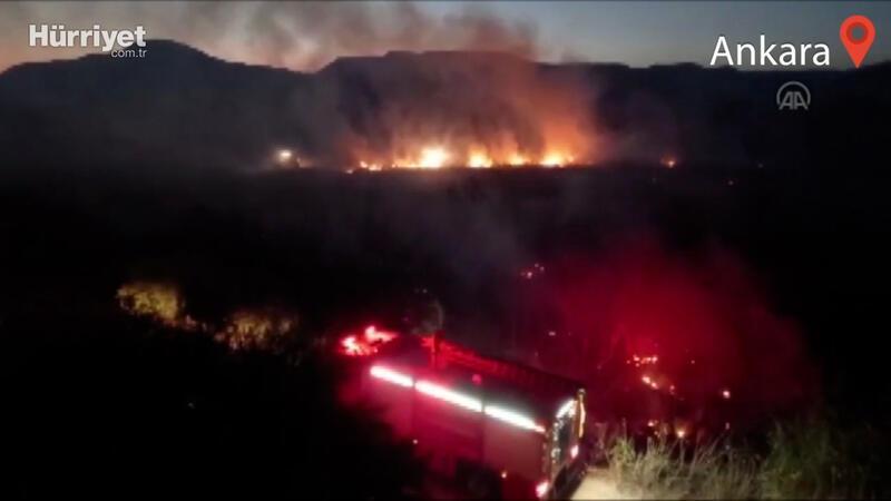 Ankara Nallıhan Kuş Cenneti'nde çıkan yangın kontrol altına alındı