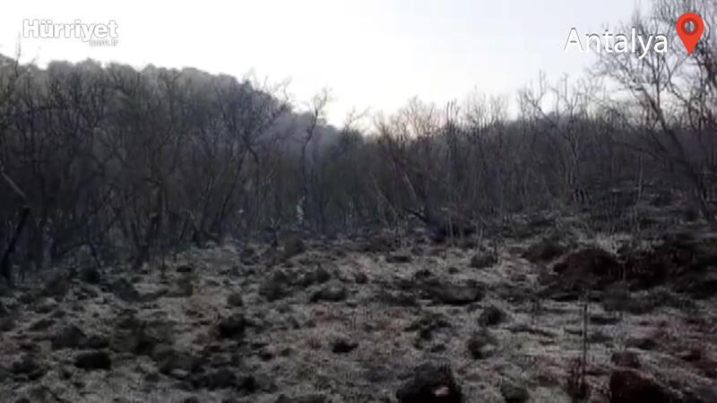 Antalya'nın Demre ilçesindeki orman yangını söndürüldü