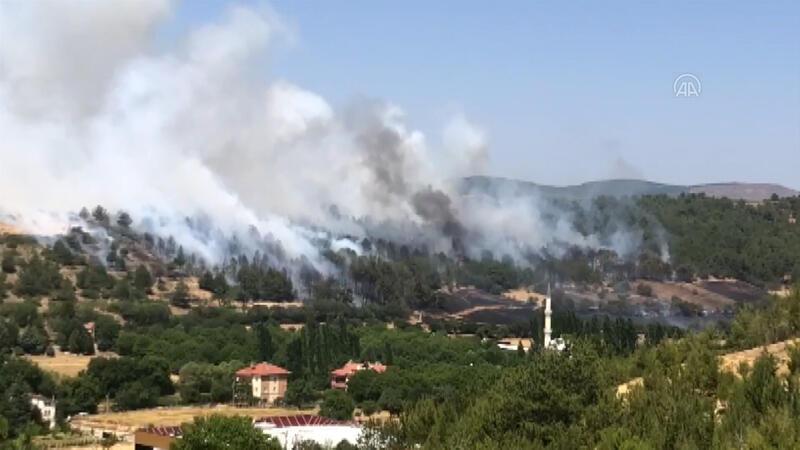 Uşak'ta Çokkozlar mevkiinde ormanlık alanda yangın