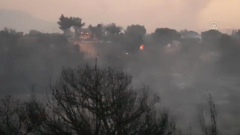 Yunanistan'da çıkan orman yangınlarını söndürme çalışmaları devam ediyor