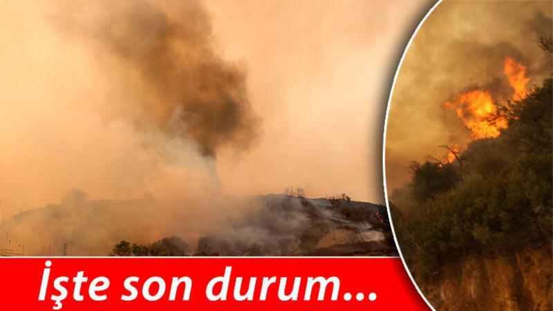 Yangın termik santral bölgesinde! Canlı yayında korkutan anlar