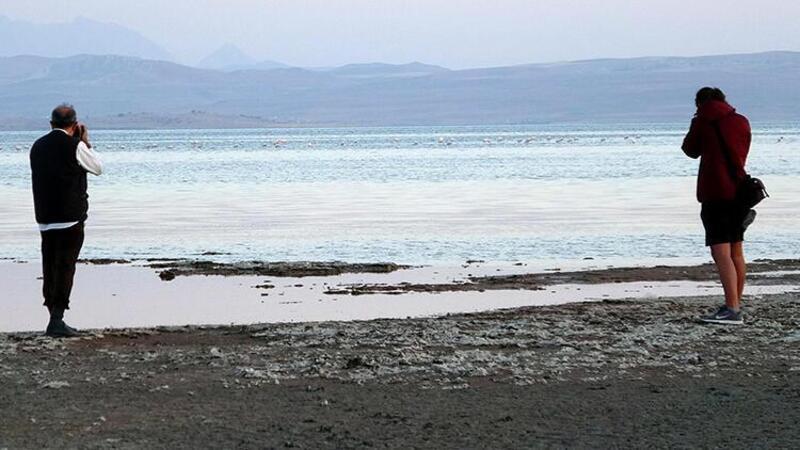 Van Gölü havzasındaki kuşlar kuraklık nedeniyle göç etti