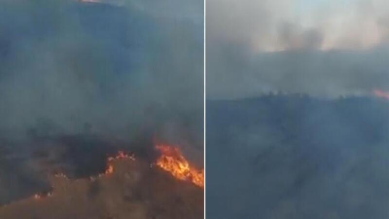 İzmir'de makilik ve otluk alanda yangın çıktı