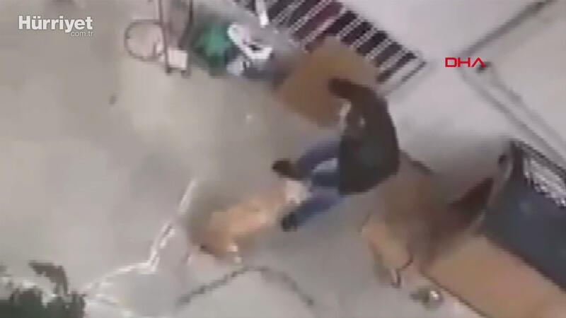 Maltepe'de köpeğine şiddet uygulayan emekli radyoloji uzmanı gözaltına alındı