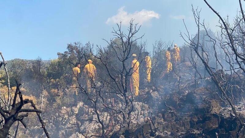 Antalya'da makilik alanda çıkan yangın kontrol altına alındı