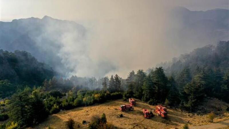 Antalya'nın Kemer ilçesinde orman yangını