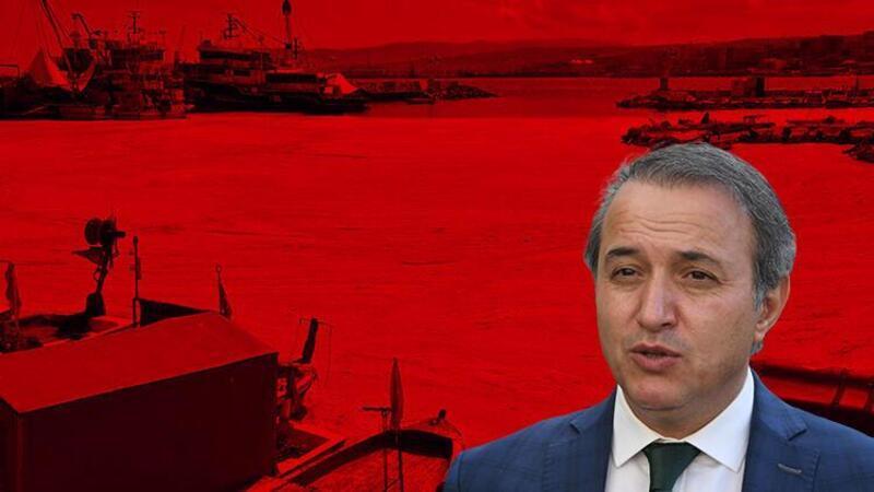 Prof. Dr. Tecer: Marmara'da durağan deniz koşulları devam ettikçe müsilaj tehlikesi var