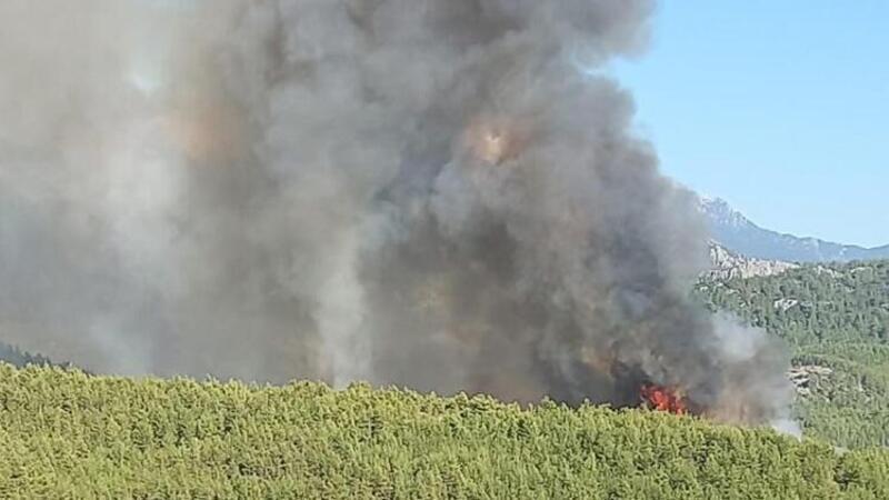 Antalya'nın Serik ilçesinde orman yangını