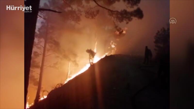 Edremit'te çıkan orman yangınına müdahale ediliyor