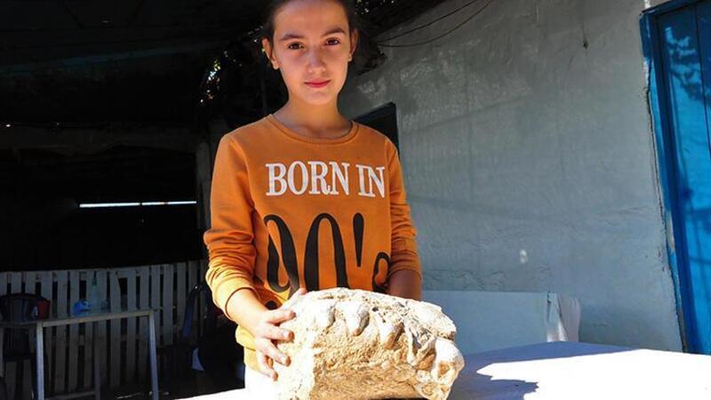 10 yaşındaki Elçin, tarlada buldu! Milyonlarca yıllık olduğu sanılıyor, incelemeye alındı