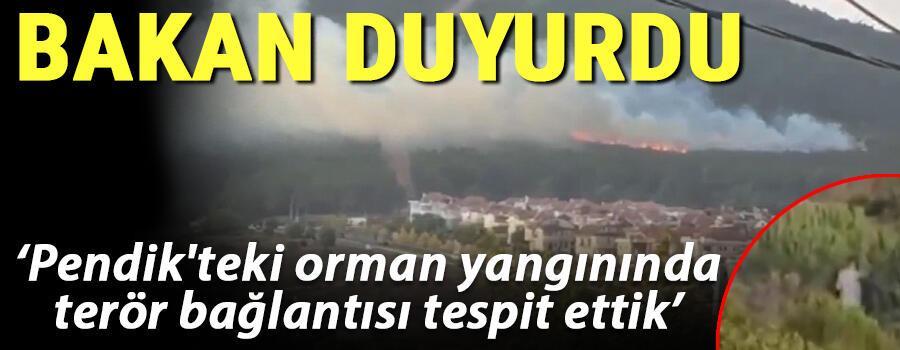 Son dakika.. Bakan duyurdu: Pendikteki orman yangınında terör bağlantısı tespit ettik