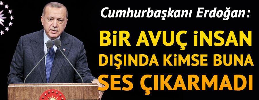 Son dakika haberi... Cumhurbaşkanı Erdoğan: Bir avuç insan dışında kimse buna ses çıkarmadı