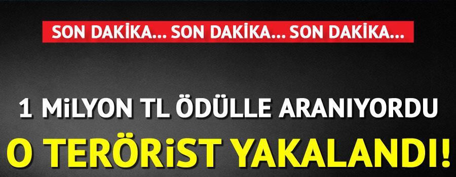 Son dakika haberler... 1 milyon TL ödülle aranan terörist yakalandı