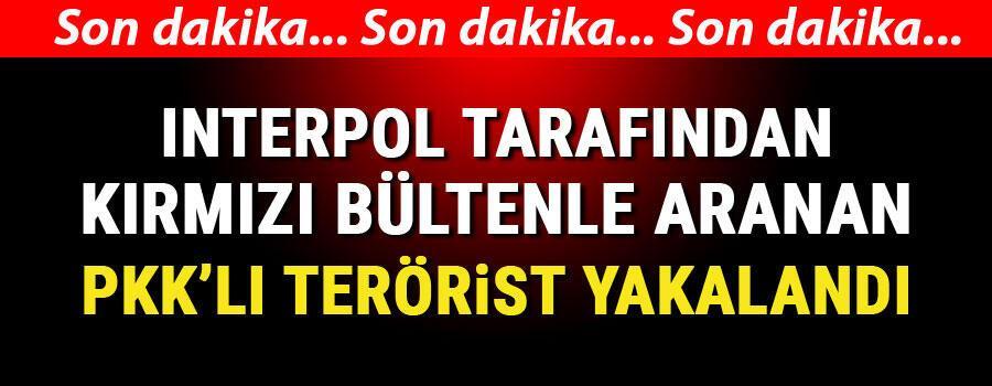 Son dakika... Interpol tarafından kırmızı bültenle aranıyordu... O PKKlı terörist yakalandı